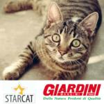 starcat cibo per gatti giardini spa