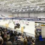 Mangmi per cavalli Horse Power giardini Spa a Roma Expo 2018