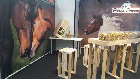 Horse Power a Cavalli a Roma di Giardini spa